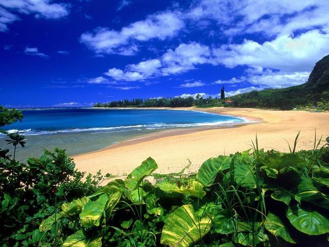 夏威夷旅游计划